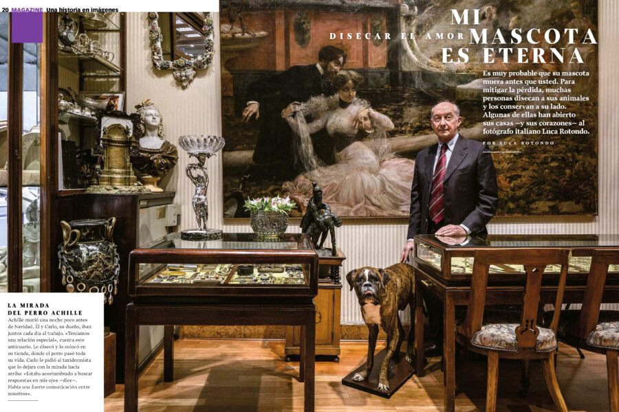 Luca Rotondo_fotografo_photographer_xlsemanal_lares_animal_pet_taxidermy